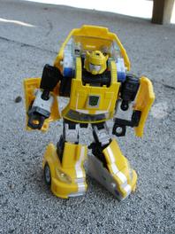 Bumblebee02