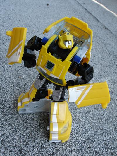 Bumblebee04
